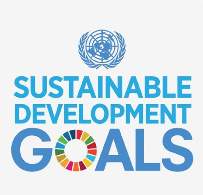 United Nations' Sustainable Development Goals and Companies' Business Performance