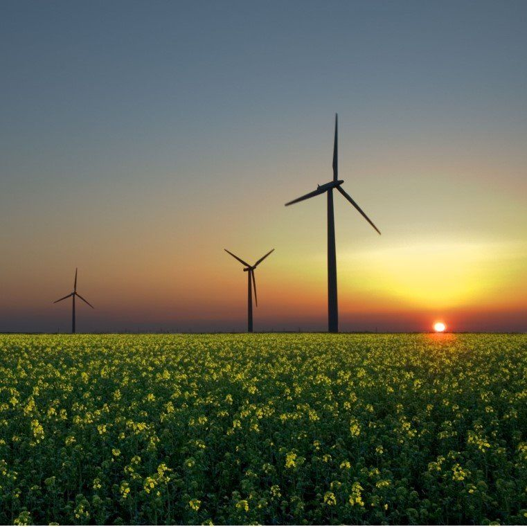 The Revolution of Renewable Energy