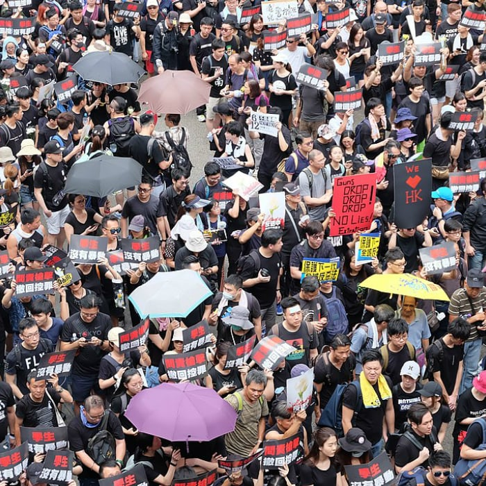 Hong Kong Protests and their Potential Consequences