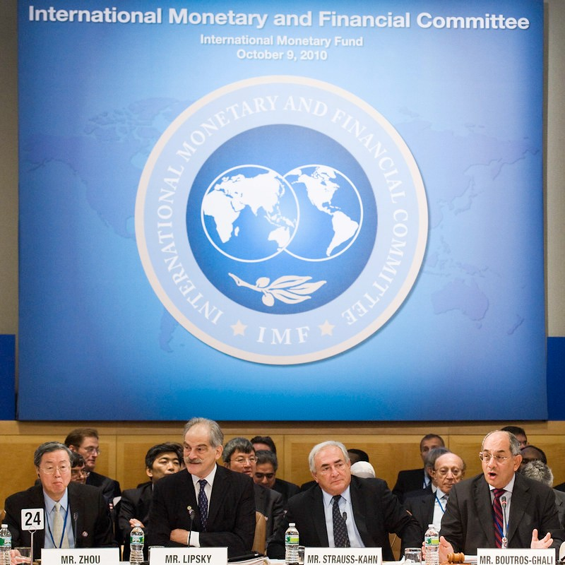 The Global Impact of the International Monetary Fund Image
