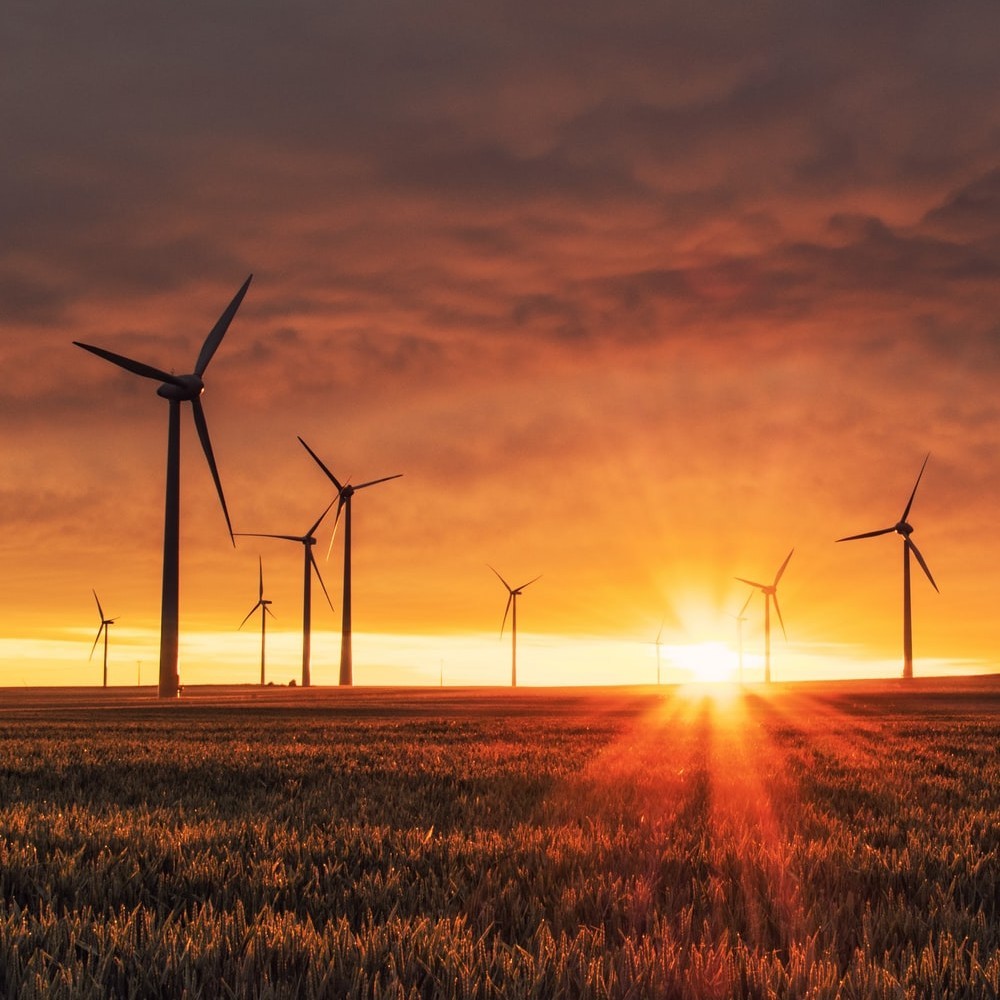 Sustainability Trends by Industry Image