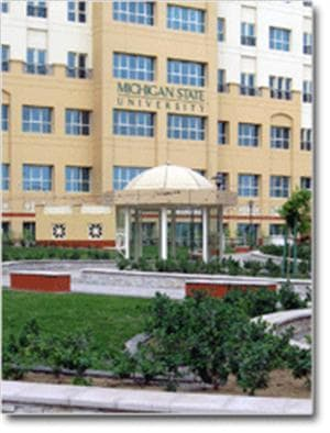 MSU Dubai campus to launch IB Specialization fall 2011